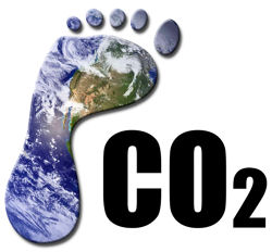 Offsetting Your Website's Carbon Footprint?